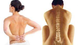 Výsledok vyhľadávania obrázkov pre dopyt breussova masáž chrbta